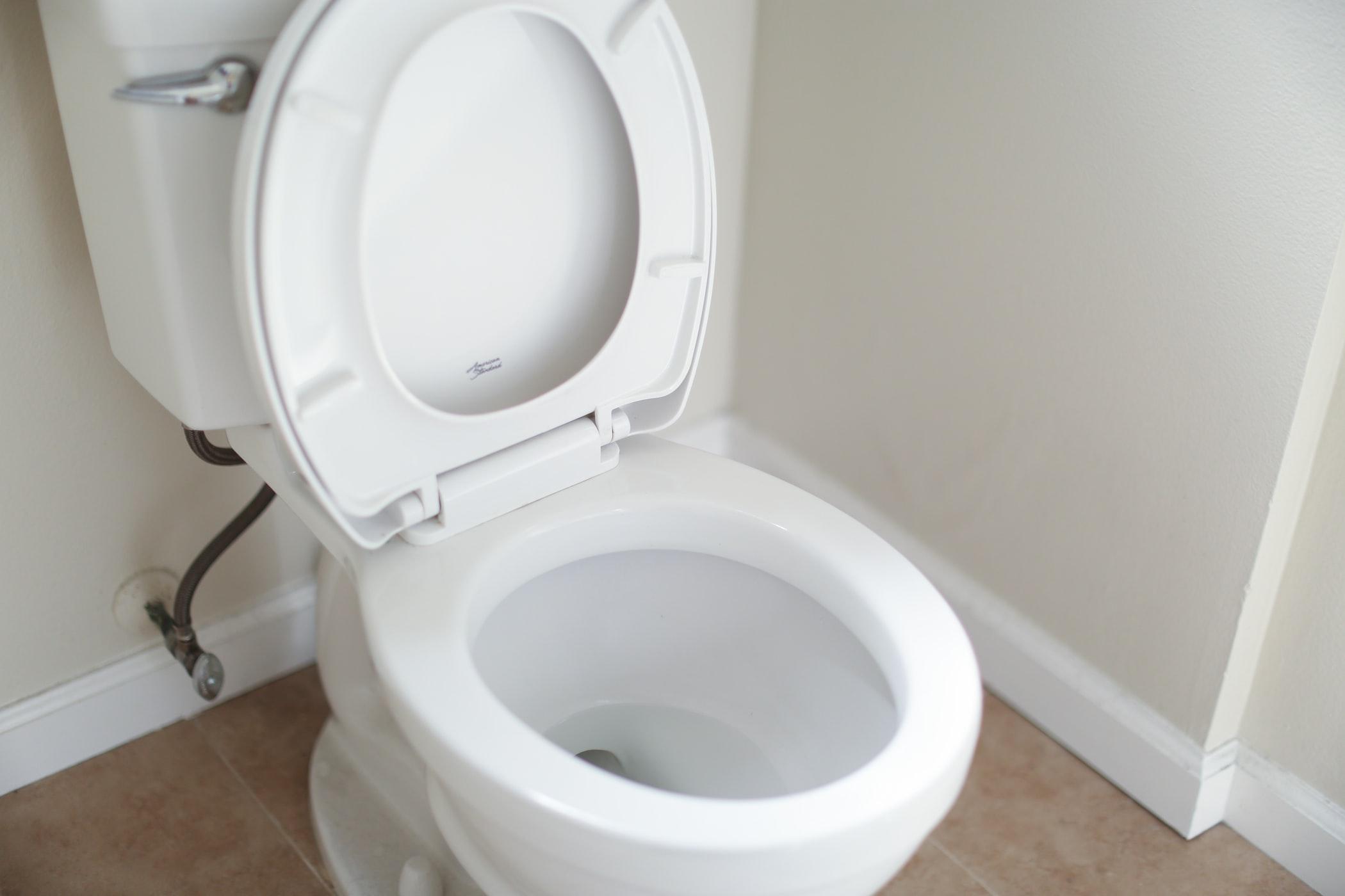 Toilet Service & Repair